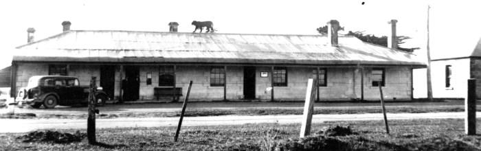 tiger hotel 1940s