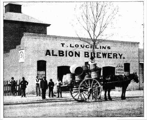 albion brewery wagga wagga 1897