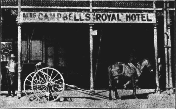 Royal Hotel Lismore 1931 horse Northern Star September 7 1931