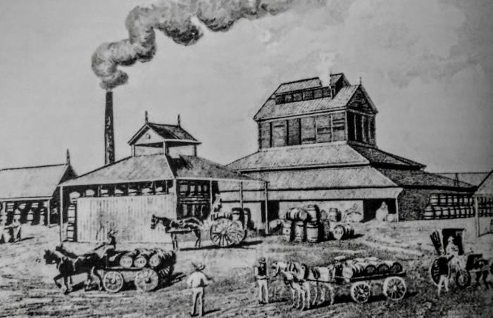 bulimba brewery origina