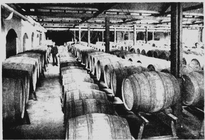 Adams Tasmanian Brewery barrels 1904