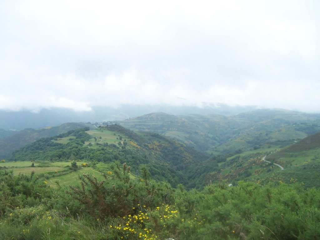 The Galician countryside