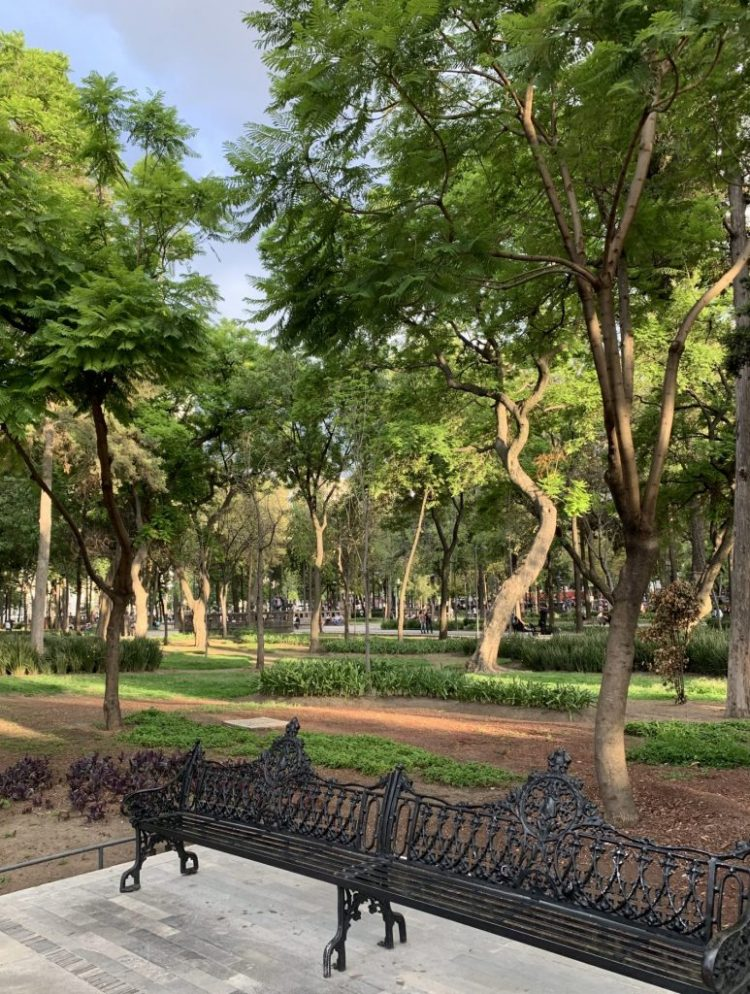a park bench in Alamenda Central
