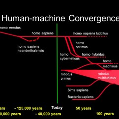 Diagram Of Evolution Timeline Split Ac Wiring In Hindi Future Human The More Accurate Guide To 2