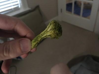 dried broccoli