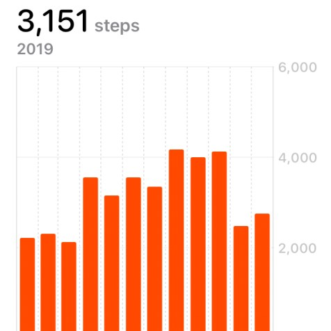 2019 Steps
