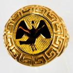 anello giallo cigno giallo
