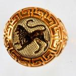 anello rosso leone giallo
