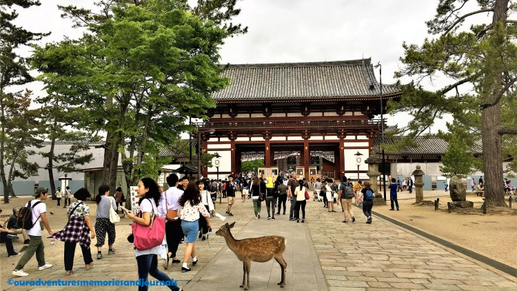 The approach to Todaiji Temple is through the Nandaimon, the Great Southern Gate.
