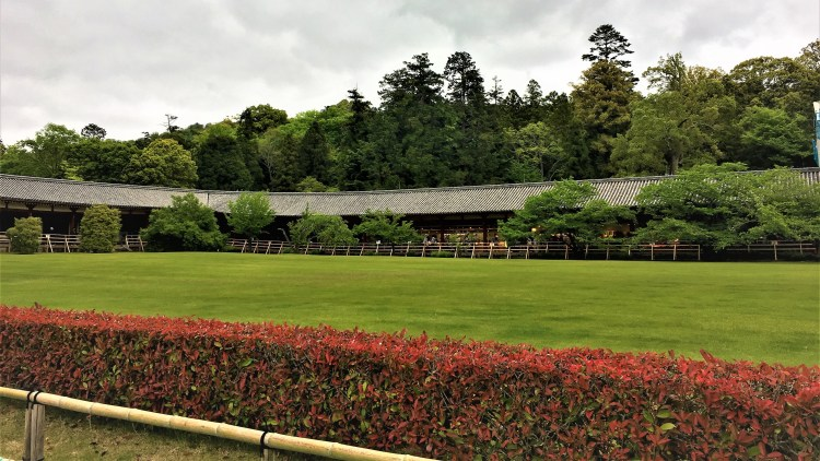 Part of the Todaiji Temple grounds in Nara where the visitor centre is for you to purchase souvenirs and crafts