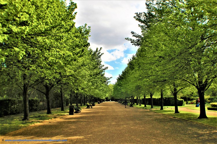 Regent's Park: This tree-lined path welcomes you to Avenue Gardens.