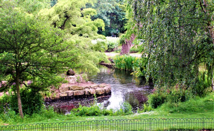 The view from the top of the waterfall, Japanese Garden, Regent's Park. London