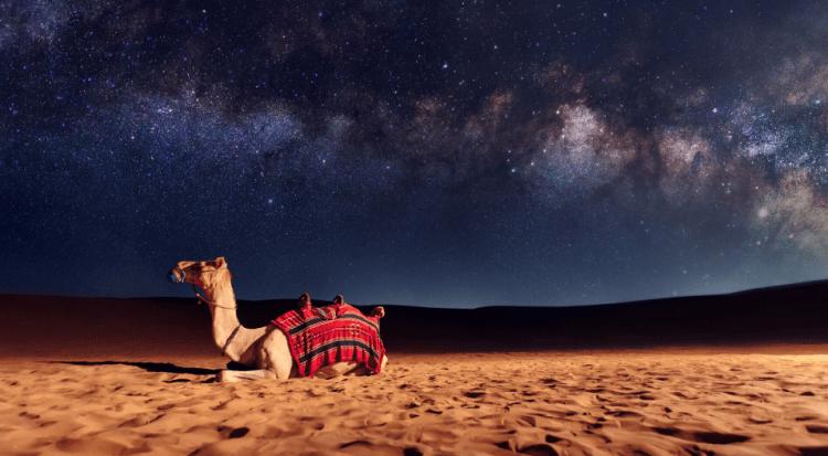 Travel to UAE - My Footsteps