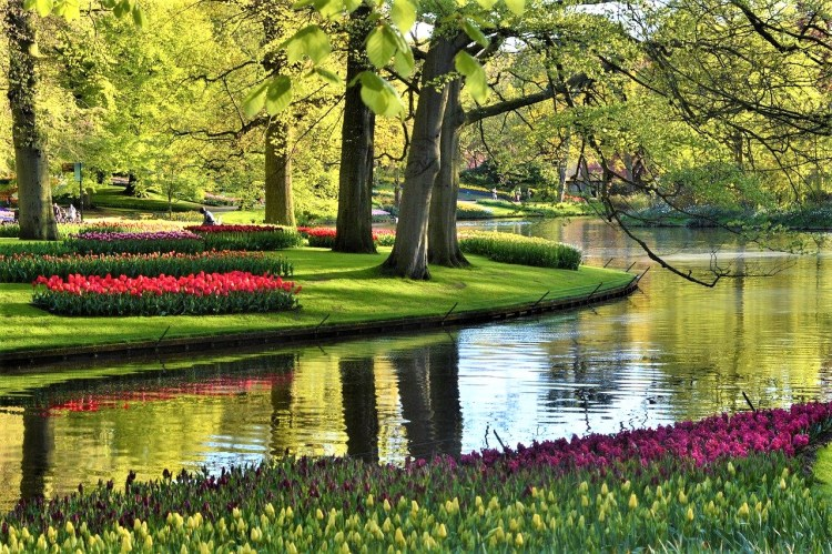 Spring/early summer in Amsterdam