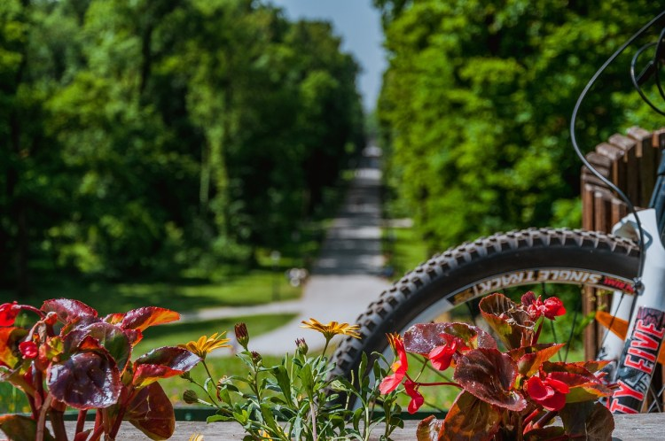 Explore Amsterdam by bike in 2 rewarding ways