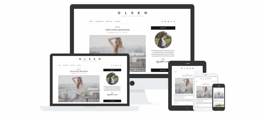 Olsen Light Template WordPress Premium