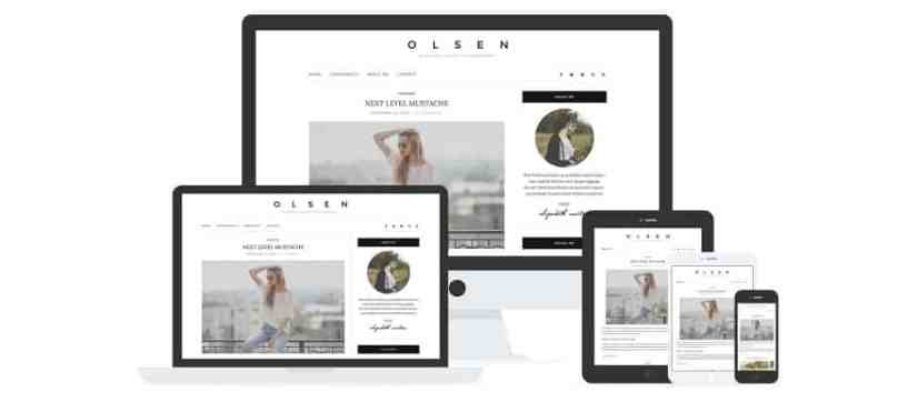 Olsen Light Template WordPress Premium