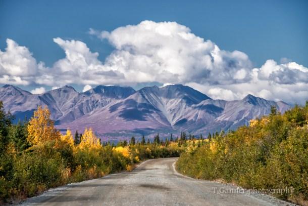 Alaska, autumn, foliage, Denali Highway