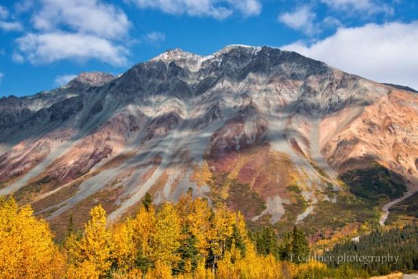 Alaska, autumn, foliage, Richardson Highway, Rainbow Highway