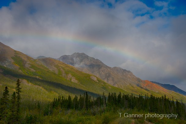 Alcan, Alaska Highway, Rainbow, Haines Junction, Yukon Territory, Kluane