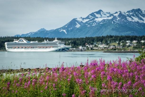 tourism, experience, Haines, Alaska, Southeast, cruise ship