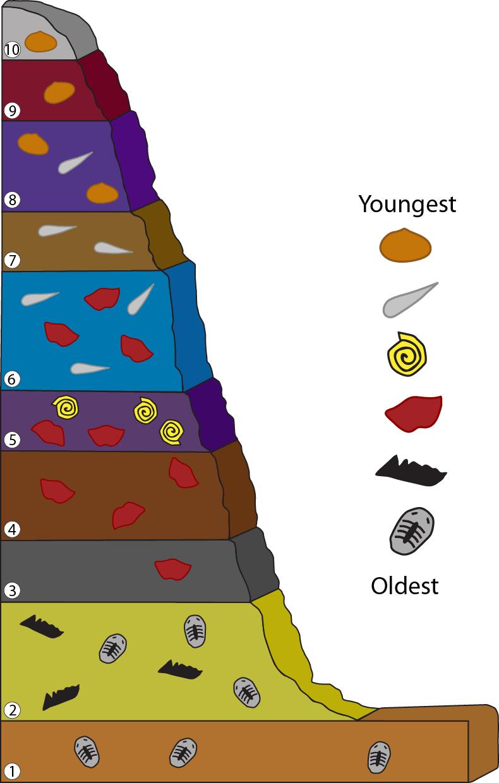 definere relative dating fossiler