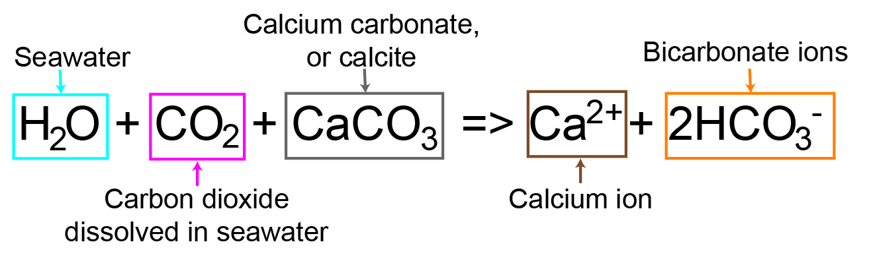 Ocean Chemistry Acidification Time Scavengers
