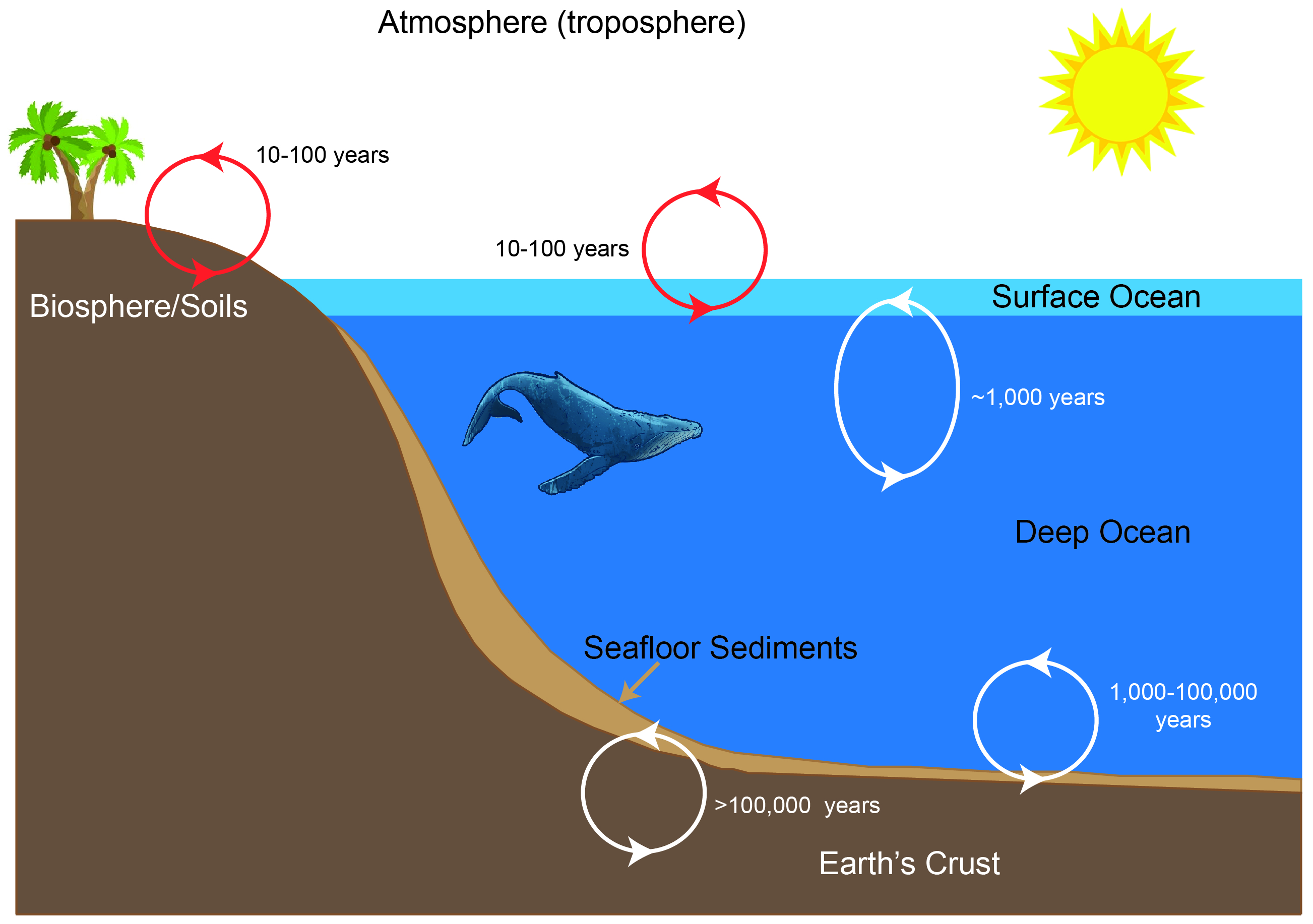 graph on the oceanic zone image collections