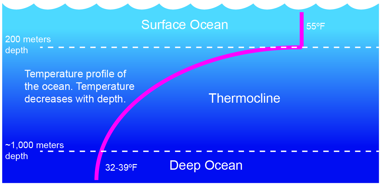 Ocean Layers Mixing Time Scavengers