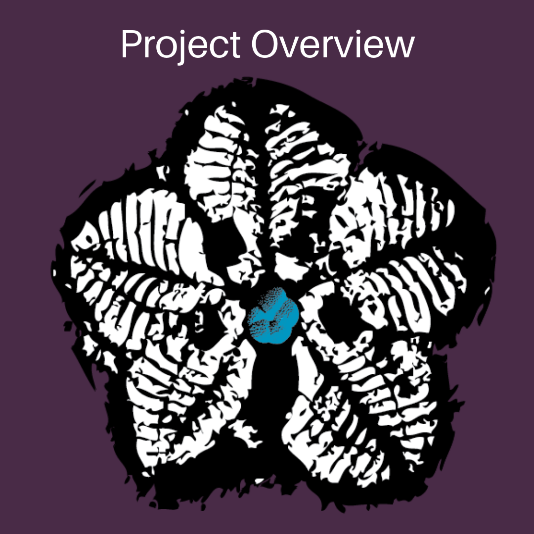 Project Overview Time Scavengers