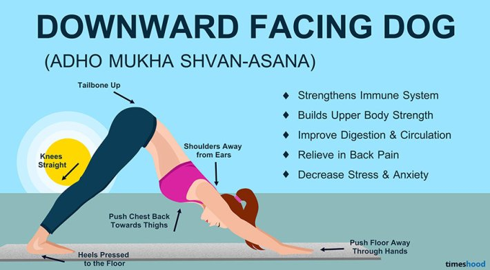 Downward Facing Dog Pose - Yoga for Beginners