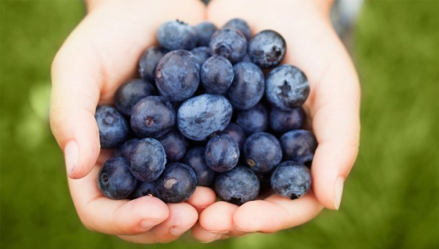 Blueberries for weight loss. weight loss foods and diet. Fruits that helps to lose weight fast.
