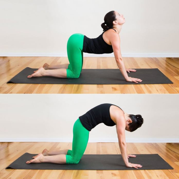 A 30-minute active yoga workouts for every morning. These yoga workouts sequence will toned your buttocks, trim belly and slim down your legs. Easy yoga workouts sequence for beginners.