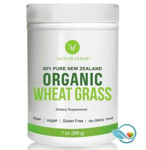 Antler Farms 100% Pure New Zealand Organic Wheat Grass