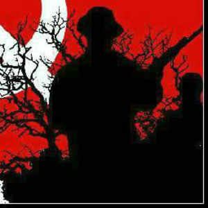 Jharkhand records highest Naxal violence this year