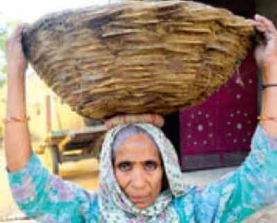 A woman of Radhna Enayatpur village, UP, who works as a manual scavenger