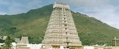 <p>Tiruvannamalai temple<br></p>