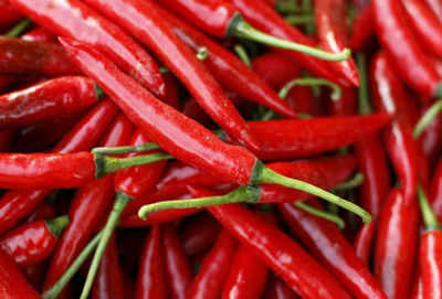 """The woman claims that the """"strong overwhelming vapour of hot chillis"""" leads to respiratory problems. (Representative photo. Courtesy: Reuters)"""