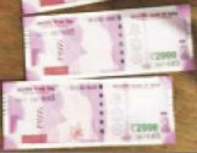 The Rs 2,000 notes at an SBI branch in MP's Sheopur district