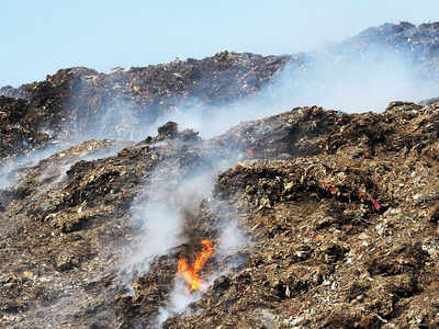 Delhi pollution: Bhalswa landfill fire rages on as city chokes