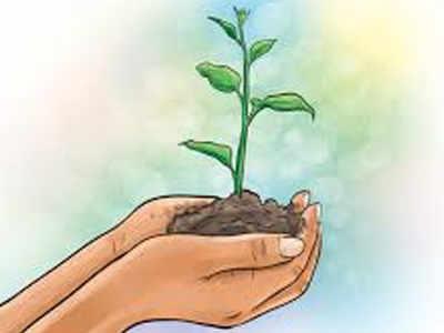 Intensive Tree Plantation Drive In Bhagalpur Patna News Times Of India