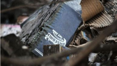Baseball card collection was among the casualties on Black Rail Road in Carlsbad.