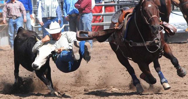Poway rodeo steer wrestling 645x340