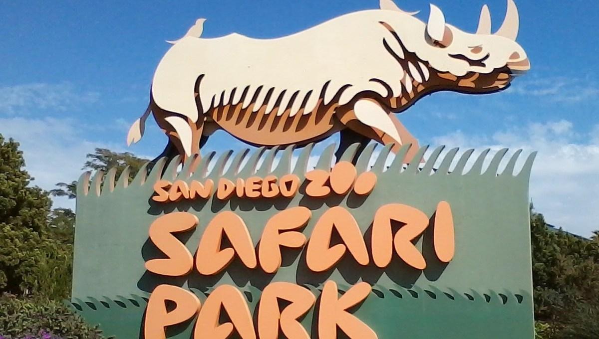 San Deigo Zoo Safari Park