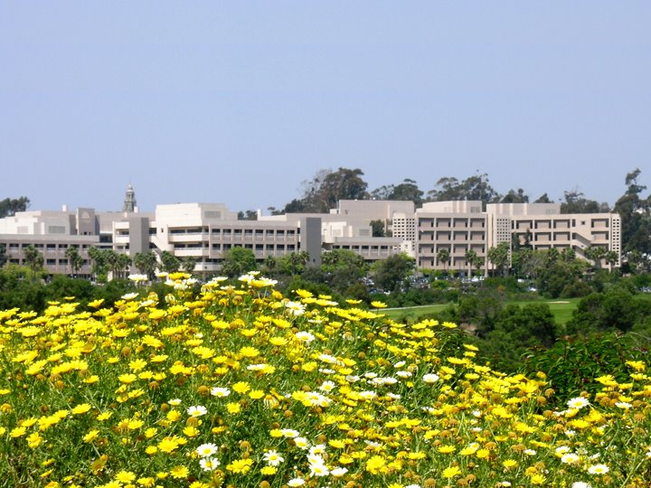 Naval Medical Center San Diego.