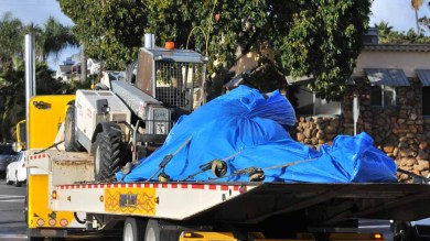 The whale carcass was taken by truck to the Miramar Landfill. Photo by Chris Stone
