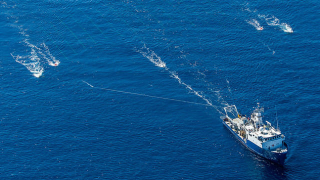 Scripps research vessel New Horizon tows a hydrophone array over the offshore fault. Courtesy Scripps Institution of Oceanography