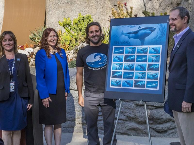 Sharks Forever Stamps