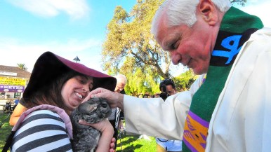 Jellybean the chinchilla from Clairemont, gets a blessing from the Rev. Michael Sinor.