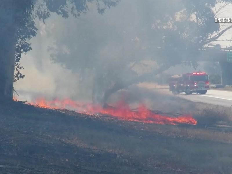 San Ysidro brush fire